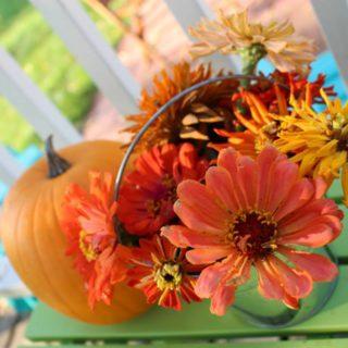 Thanksgiving Centerpiece DIY